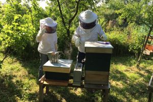 Защитно пчеларско облекло