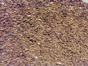 фацелия - семена